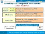 estructura de los programas de doctorado tutela acad mica