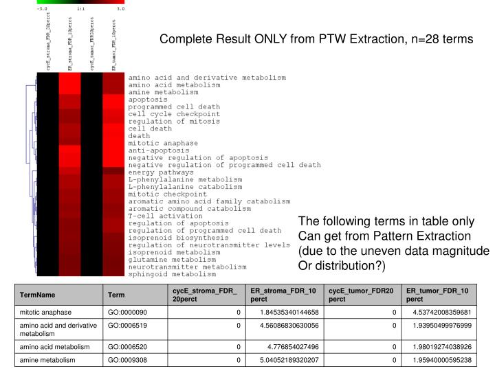 Complete Result ONLY from PTW Extraction, n=28 terms