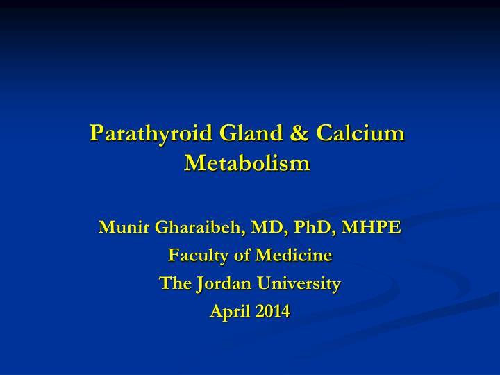 Parathyroid Gland & Calcium Metabolism
