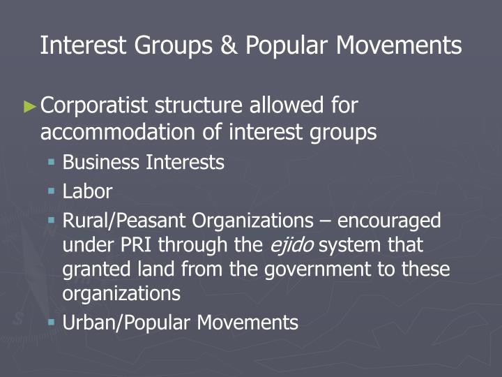 Interest Groups & Popular Movements