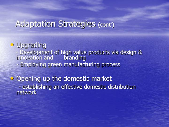 Adaptation Strategies