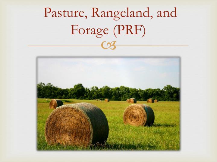 Pasture,
