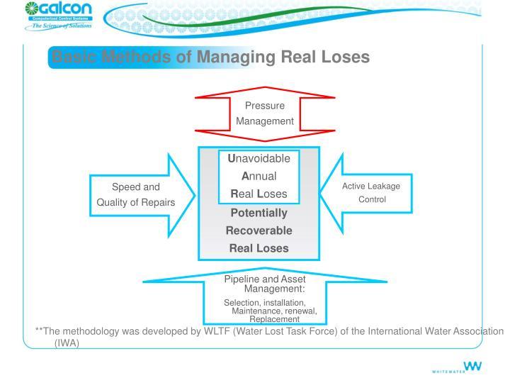 Basic Methods of Managing Real Loses