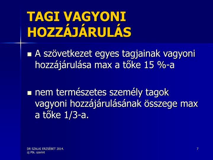 TAGI VAGYONI HOZZÁJÁRULÁS