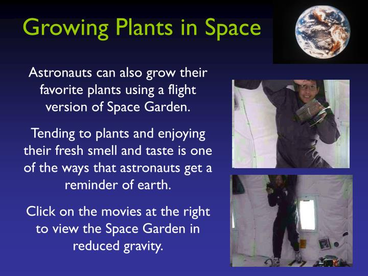 Growing Plants in Space
