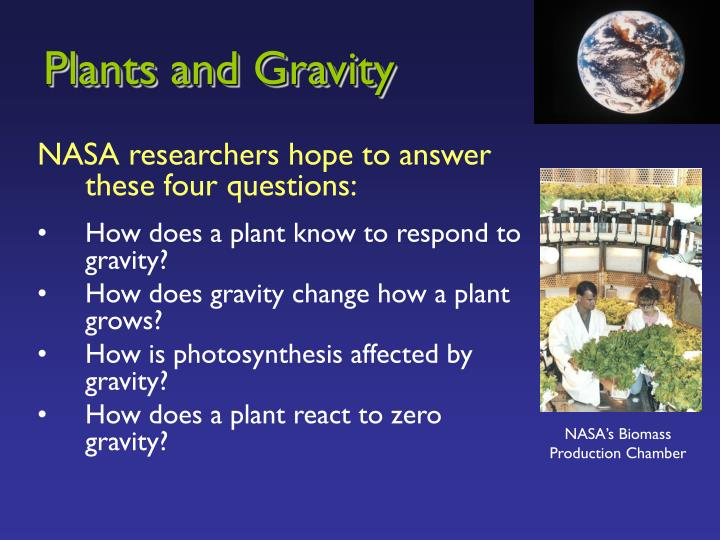 Plants and gravity