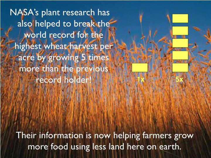NASA's plant research has also helped to break the world record for the highest wheat harvest per acre by growing 5 times more than the previous record holder!