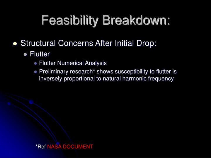 Feasibility Breakdown: