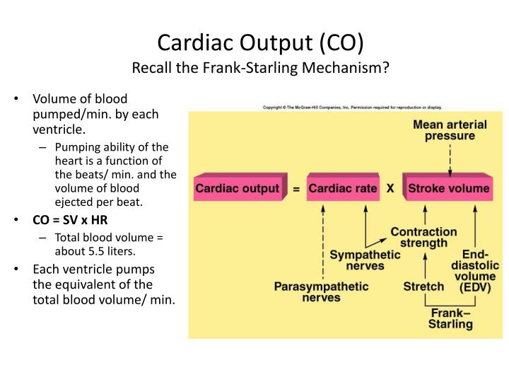 Cardiac Output (CO