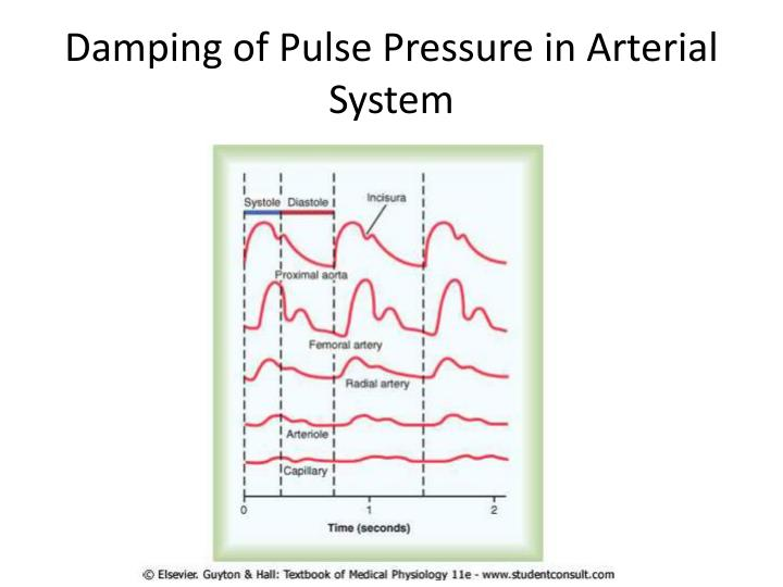 Damping of Pulse Pressure in Arterial System