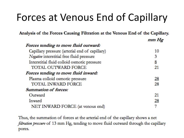 Forces at Venous End of Capillary