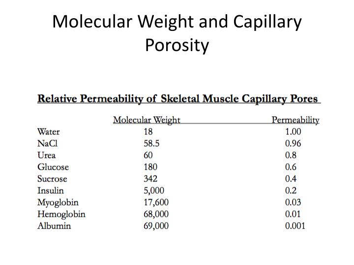 Molecular Weight and Capillary Porosity
