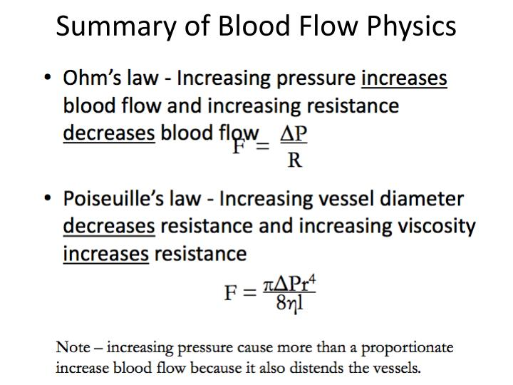 Summary of Blood Flow Physics