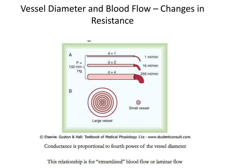 Vessel Diameter and Blood Flow – Changes in Resistance