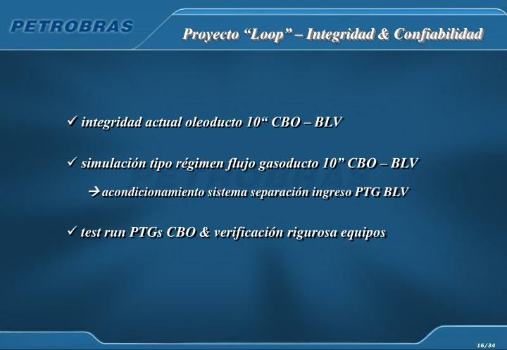 """Proyecto """"Loop"""" – Integridad & Confiabilidad"""