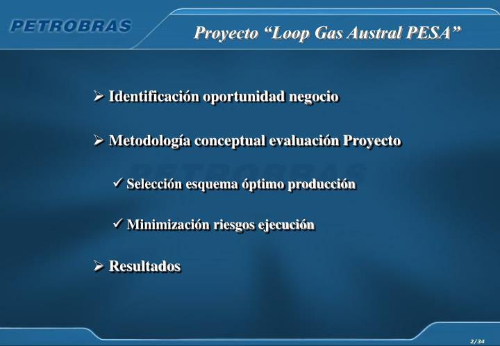 """Proyecto """"Loop Gas Austral PESA"""""""