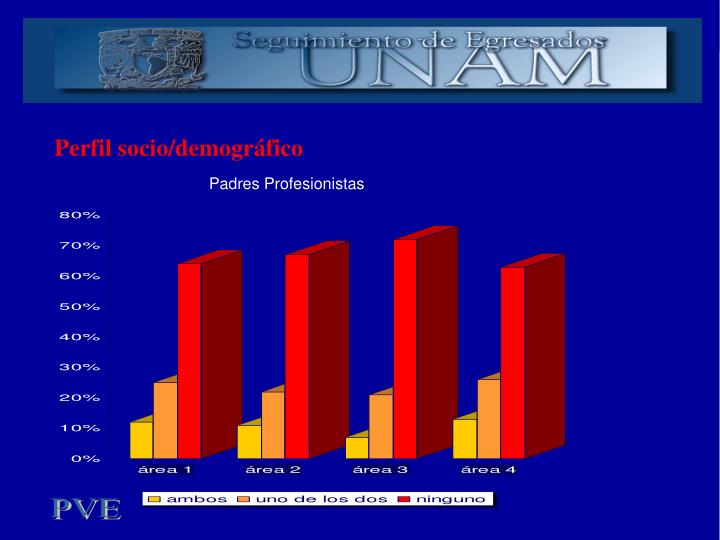 Perfil socio/demográfico