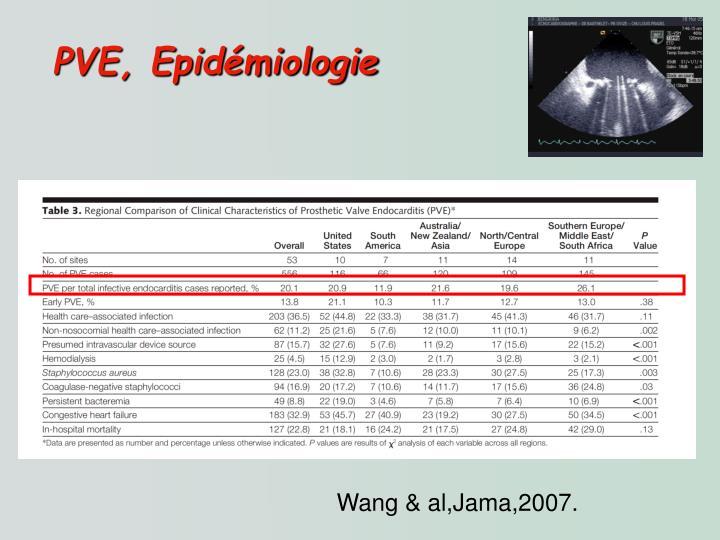 PVE, Epidémiologie