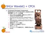 sh or wavelet cpca