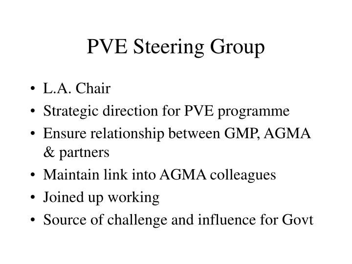 PVE Steering Group