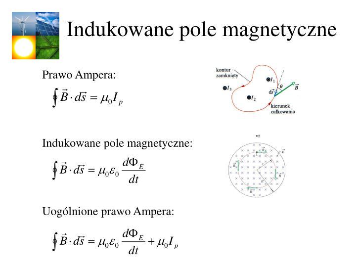 Indukowane pole magnetyczne