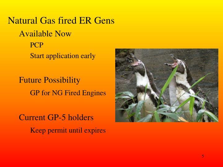 Natural Gas fired ER Gens