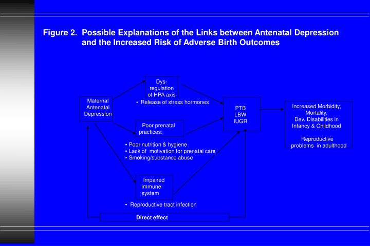 Figure 2.  Possible Explanations of the Links between Antenatal Depression