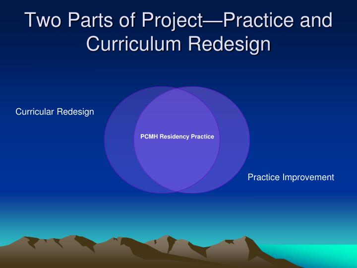 Two Parts of Project—Practice and Curriculum Redesign