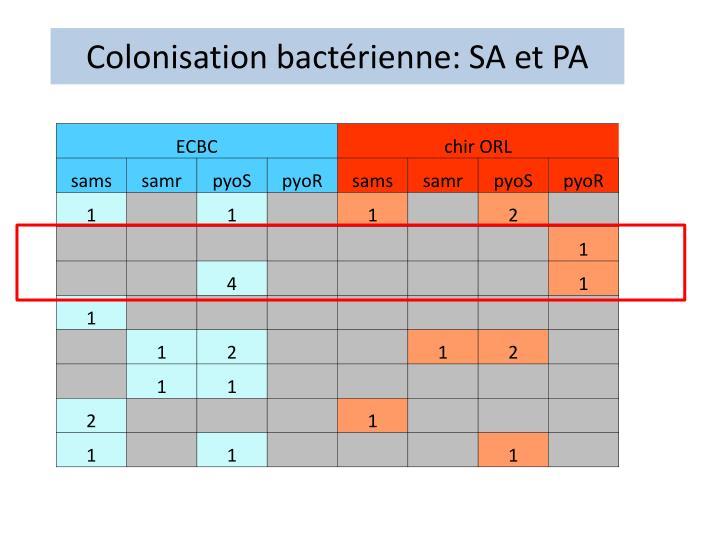 Colonisation bactérienne: SA et PA