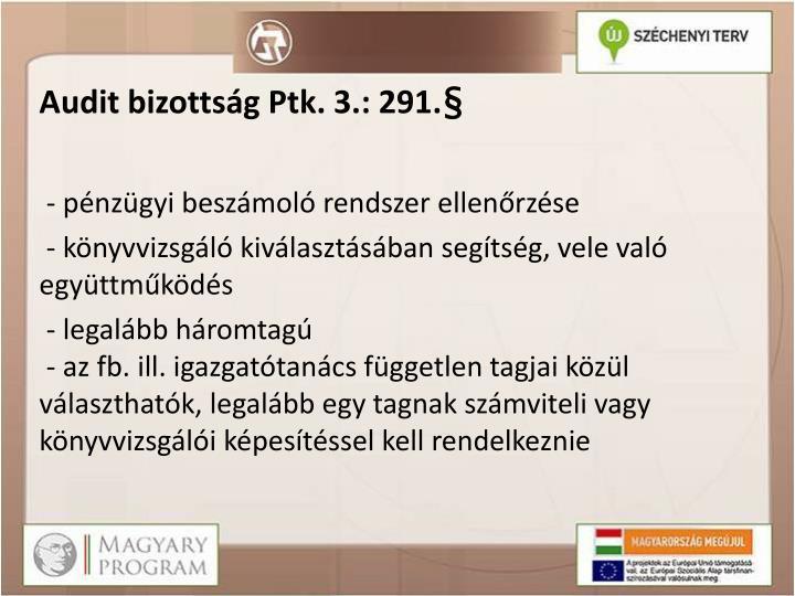 Audit bizottság Ptk. 3.: 291.§