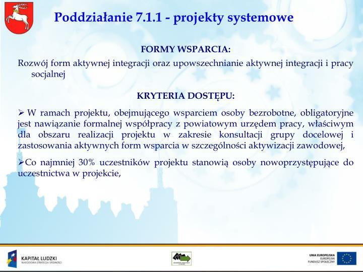 Poddziałanie 7.1.1 - projekty systemowe