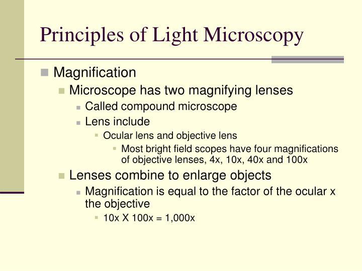 Principles of Light Microscopy