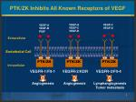 ptk zk inhibits all known receptors of vegf