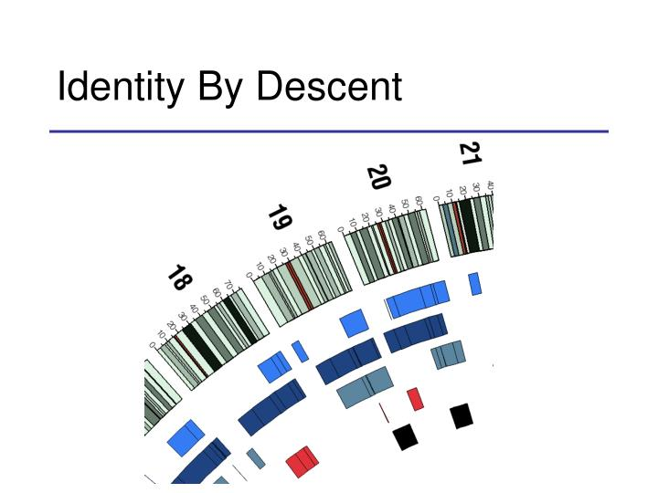 Identity By Descent