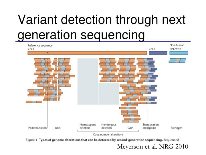 Variant detection through next generation sequencing