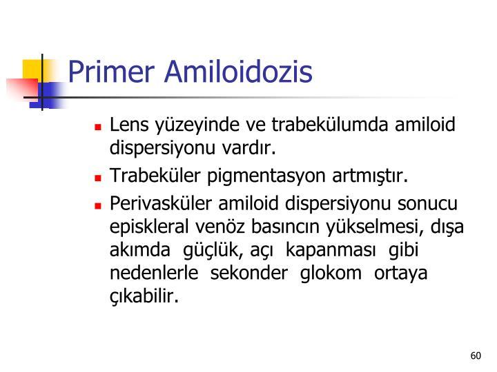 Primer Amiloidozis