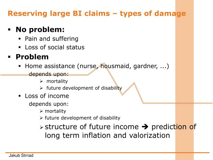 Reserving large BI claims – types