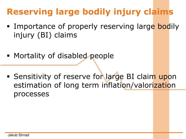 Reserving large bodily injury claims