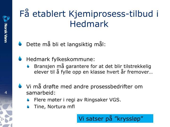 Få etablert Kjemiprosess-tilbud i Hedmark