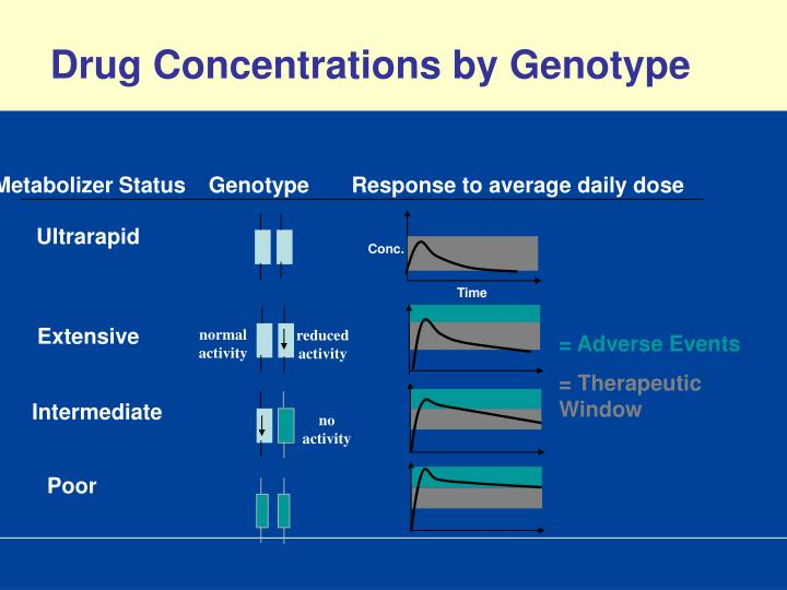 Drug Concentrations by Genotype