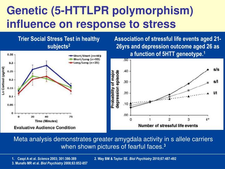 Genetic (5-HTTLPR polymorphism) influence on response to stress