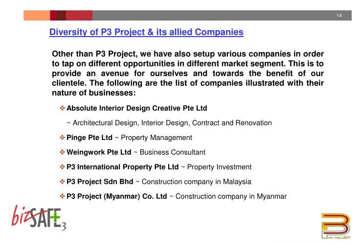 Diversity of P3 Project & its allied Companies