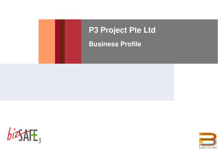 P3 Project Pte Ltd