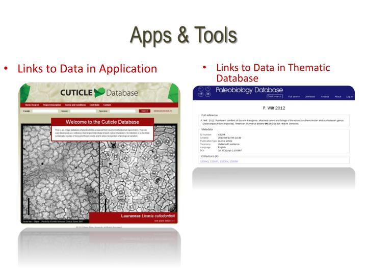 Links to Data in Application