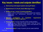 key issues needs and outputs identified2