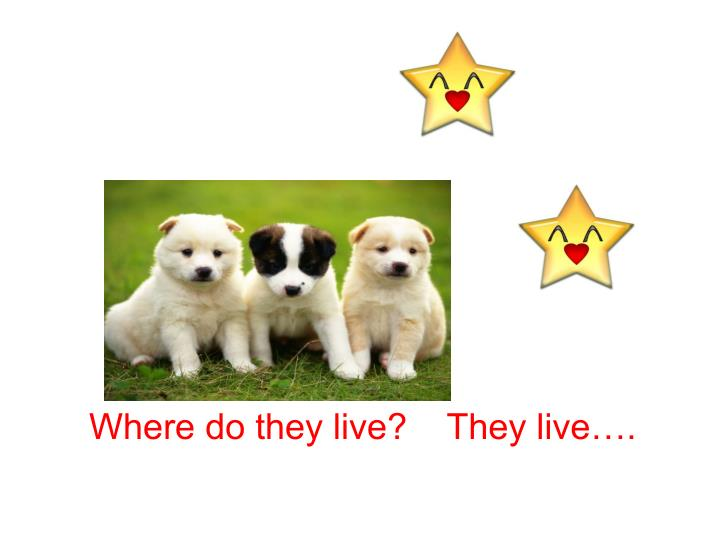 Where do they live?    They live….