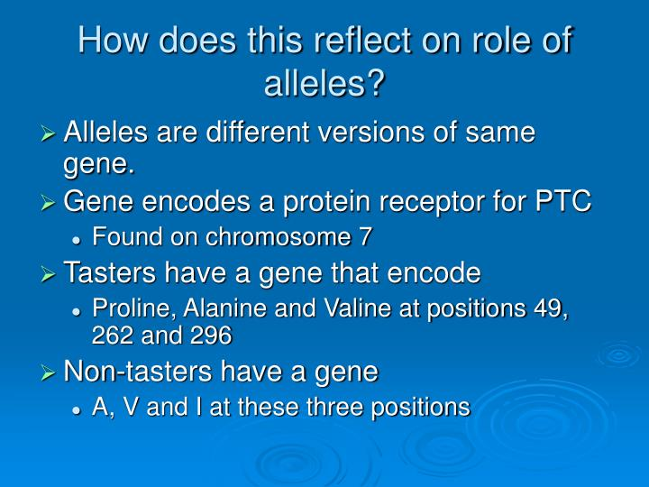 How does this reflect on role of alleles?