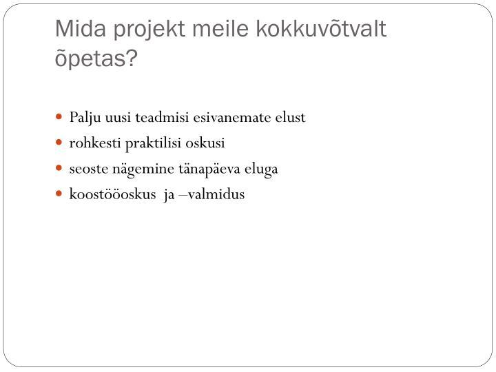 Mida projekt meile kokkuvõtvalt õpetas?