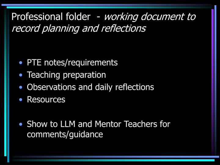 Professional folder  -