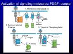 activation of signaling molecules pdgf receptor
